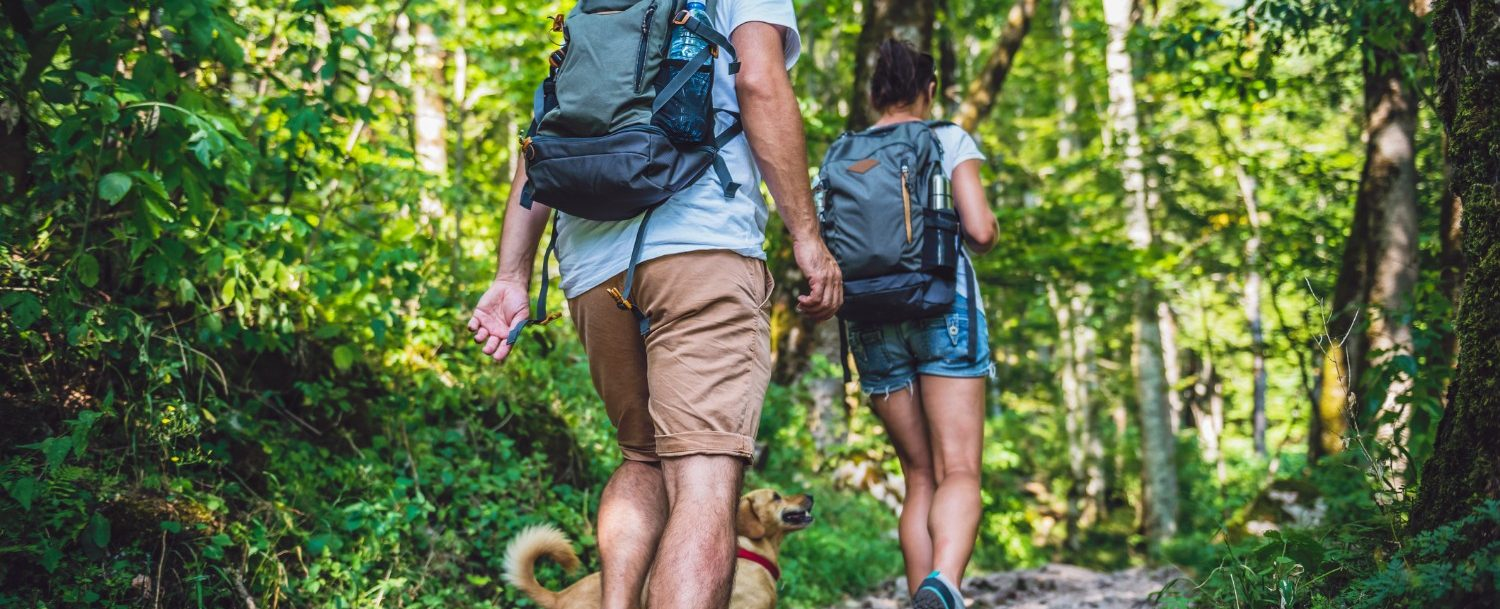 Couple with a small yellow dog hiking in forest